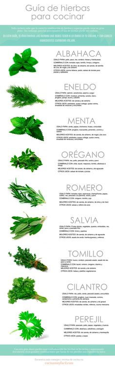 Infografía hierbas para consumo.