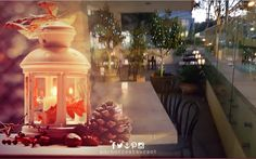 Autumn candles and nights as you wine and dine indoors or out (alfresco) ⚓ ANCHOR Cafe & Restaurant - Taste the difference!  #autumnnights #autumndays #alfresco #anchorcafe #anchorrestaurant #anchorestaurant #milsonspoint #kirribilli #lavenderbay #autumnlight #autumnal #autumn2016 #autumncolours #autumnweather #autumnleaves #autumntrees #autumnflowers #autumnday #autumnfashion #autumntime #autumnstyle #autumnsun #autumnsky #autumnlove #autumnlook #autumnmood #autumnvibes #autumnishere