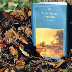 Die richtige Lektüre für kalte Herbsttage 👍 #library #bücher #emilybrontë #sturmhöhe #heathcliff #wednesdayvibes #buchliebe