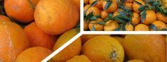 Άρωμα σαπουνιού (Αφρόλουτρο) – Συνταγές της Ασπρούλας Carrots, Orange, Fruit, Vegetables, Recipes, Food, Ideas, Recipies, Essen