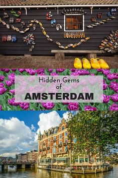 Looking for off the beaten track and hidden gems in Amsterdam? Look no further! Read about my suggestions on things to do and places you don't want to miss in Amsterdam, Holland.