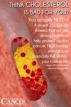 Many studies show that patients who lower their cholesterol levels by taking statin drugs increase their risk of developing other chronic health conditions such as cancer. In fact, the risk of the drugs outweighs the risks presented by having high cholesterol. CLICK on the image to discover the whole truth about Cholesterol, Statin Drugs, and Cancer. // The Truth About Cancer…