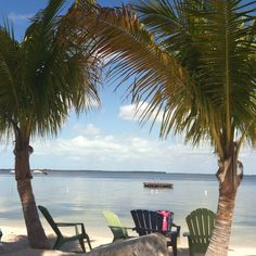 Key Largo May 2013. We also stayed in Key West...awesome vacation!!  <>