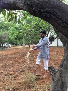 Preparing the soil with to grow vegetables at farm in Palekar's (ZBNF) method. Pawan Kalyan Wallpapers, Hd Wallpapers 1080p, Latest Hd Wallpapers, Gabbar Singh, Allu Arjun Images, Galaxy Pictures, Power Star, Shruti Hassan, Real Hero