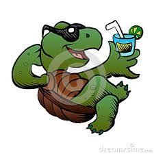 53 best turtle cartoon images on pinterest character design