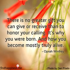 Oprah Quotes, Life Quotes, Inspiring Quotes About Life, Inspirational Quotes, Maya Angelou, Oprah Winfrey, Finding Yourself, Random, Quotes About Life