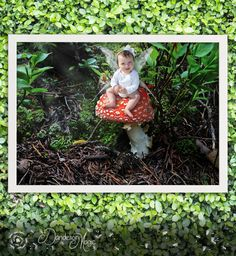 Sitting on a mushroom fairy