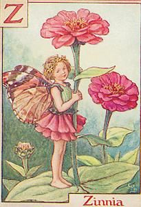 Z is For Zinnia- by Cicely Mary Barker. This is also one of my favorite alphabet flower fairies!