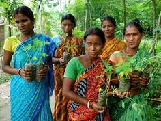 Village in India plants 111 trees every time a girl is born