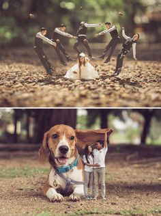 Adorable and unique pre-wedding engagement photo shoot idea where couples are made mini with giant beagle dog // Thai photographer Ekkachai Saelow of Khontuelek Photography specializes in shrinking couples and placing them in over-sized worlds! The talented shooter photoshops couples out of their original pictures and into small-scale landscapes, before applying tilt-shift effects to create the illusion