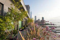 Brook Landscape Gardens Tribeca