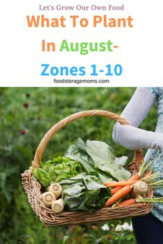 Have you been wondering what to plant in August? Can you believe the price of groceries? They just keep going up. It's critical we plant a garden and produce at least part of our food.