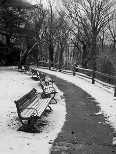 Snowy Day In Sea Cliff, NY...photo Credit To My Uncle