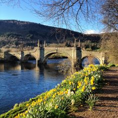 Very nice Spring evening on the River Tay at Wade's Bridge in not too far from
