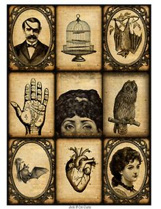 Illustration Bat Halloween crafts hand portrait heart human antique Anatomy owl Michael gothic victorian mixed media flight ink drawing bird cage altered art lesley jack and cat curio
