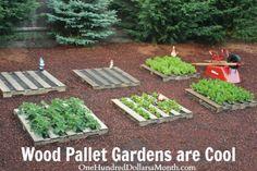 How to DIY wood pallet garden | DIY Tag