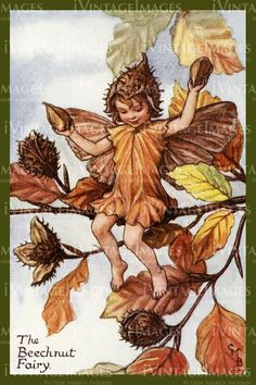 Cicely Barker 1923 - 37 - The Beechnut Fairy