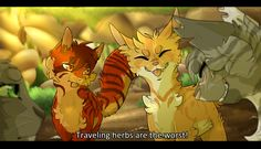 What's with Ivypool and Fernsong? Are they a thing?