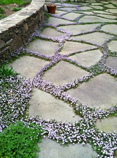 Wie man die robuste Schönheit zum Hinterhof-Steingarten holt How to bring the rugged beauty to the backyard rock garden Diy Garden, Garden Cottage, Dream Garden, Garden Projects, Garden Steps, Shade Garden, Night Garden, Garden Table, Garden Ideas Pathways