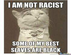 Racist Memes. Best Collection of Funny Racist Pictures