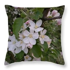 "Dainty Blossoms 14"" x 14"" Throw Pillow by Tammy Finnegan.  Our throw pillows are made from 100% cotton fabric and add a stylish statement to any room.  Pillows are available in sizes from 14"" x 14"" up to 26"" x 26"".  Each pillow is printed on both sides (same image) and includes a concealed zipper and removable insert (if selected) for easy cleaning."