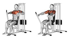 Illustration about Seated chests press. Exercising for bodybuilding Target muscles are marked in red. Illustration of lower, spine, developing - 66935857 Pilates Training, Fitness Studio Training, Body Training, Weight Training, Cable Workout, Gym Workout Tips, Pilates Workout, Fun Workouts, Workout Fitness