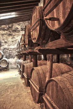 Bodegas tio pepe Tio Pepe, Wine Cellar, Romania, Firewood, Cave, Drink, Food, Wine Cellars, Rustic Style