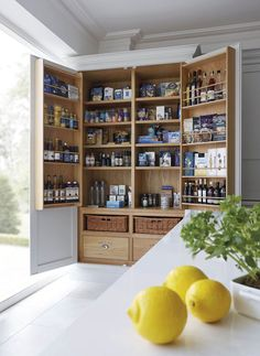 12 stylish and practical pantry ideas for your kitchen 12 Pantry Ideas – Larder Cupboard Ideas For Every Kitchen - Own Kitchen Pantry Kitchen Larder Cupboard, Kitchen Pantry Design, Kitchen Storage, Pantry Storage, Kitchen Cabinets, Pantry Organization, Kitchen Designs, Larder Cupboard Freestanding, Kitchen Island