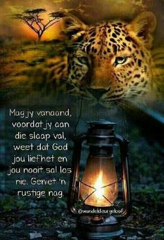 Good Night Quotes, Good Morning Good Night, Evening Quotes, Afrikaanse Quotes, Goeie Nag, Christian Messages, Good Night Sweet Dreams, Special Quotes, Sleep Tight