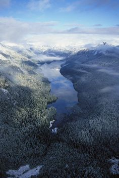 ✭ An aerial view of an alpine lake in Misty Fjord National Monument - Alaska