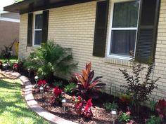 My new front yard cement curbing garden!