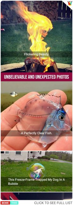 22 Unbelievable and Unexpected Photos That Will Blow Your Mind – bemethis 22 Unbelievable and Unexpected Photos That Will Blow Your Mind These Unbelievable and Unexpected Photos Will Blow Your Mind Amazing Photos, Cool Pictures, Cool Photos, Funny Pictures, Weird Facts, Fun Facts, Perfectly Timed Photos, Funny Memes, Jokes