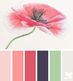 Color Bloom palette from Design Seeds Colour Pallete, Colour Schemes, Color Combos, Color Patterns, Color Palettes, Color Tones, Design Seeds, Color Studies, Color Swatches