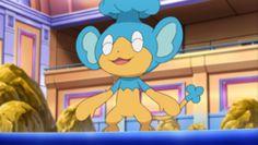 Panpour (Pokémon) - Bulbapedia, the community-driven Pokémon encyclopedia
