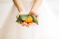 Light and Airy Citrus Inspired Bridal Shoot in Seattle on Apple Brides