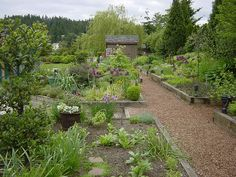 The Herbfarm, Seattle | Herb Garden | jardin d'herbes aromatiques (wow, get a load of those alliums!)