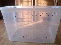 Picture of Drill Ventilation Holes Dwarf Hamster Cages, Hamster Bin Cage, Diy Hamster Toys, Gerbil Cages, Hamster Life, Hamster Habitat, Hamster House, Hamster Ideas, Hamster Stuff