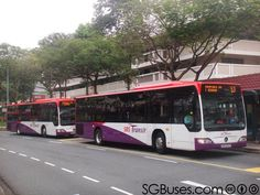 The newest kids in town - Mercedes-Benz Citaro bus, operated by both SBS Transit and SMRT Buses.