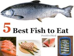 5 Best Fish to Eat- Not all fish are healthy. some of them contain enormous amount of mercury.