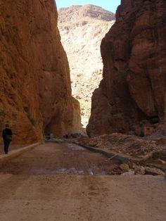 100rota: De Renaul Clio até ao Sahara Marroquino