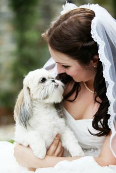 I will definitely be taking lots of wedding/engagement photos with my puppies! <3