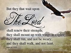 But they that wait upon the Lord shall renew their strength they shall mount up with winds as eagles they shall run, & not be weary & they shall walk, & not faint. Thy Word, Word Of God, Biblical Quotes, Bible Quotes, Christian Faith, Christian Quotes, Isaiah 40 31 Kjv, Wait Upon The Lord, Christian Inspiration