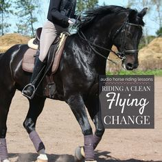 Think back to the last time you were cantering along on your horse and a change of rein was coming up. You began the task of preparing to drop back a gear into trot to change the canter lead; bett…