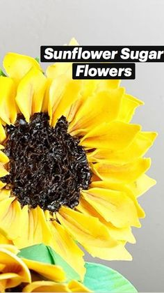 Gum Paste Flowers, Modeling Chocolate, Sugar Flowers, Autumn Theme, Custom Cakes, Dessert Table, Wedding Bouquets, Cake Decorating, Fruit