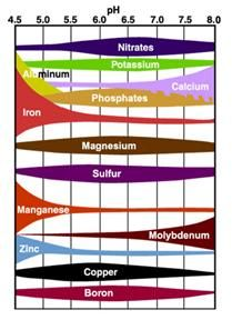 Soil Ph Chart  How Your SoilS Ph Affect Your Plants  Gardening