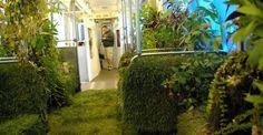 Trasporto pubblico trasformato in un giardino mobile. (Chicago)