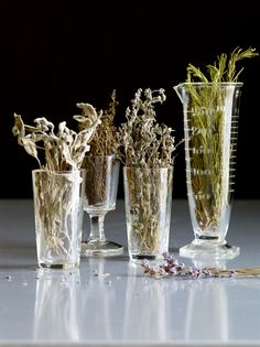 vinography's essence of wine, Dried herbs!