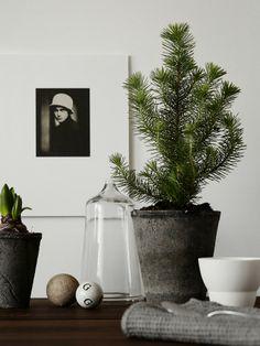 X-mas styling for Hitta hem | Styling Pella Hedeby | Foto Kristofer Johnsson