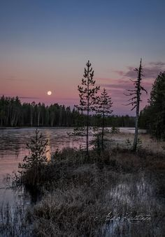 Finland by Asko Kuittinen Beautiful Moon, Beautiful World, Beautiful Places, Easy Landscape Paintings, Natural World, Nature Pictures, Amazing Nature, The Great Outdoors, Wonders Of The World