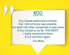 Area Rug Cleaning at Eco Carpet Pro